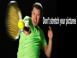Don't stretch pictures in sales presentations
